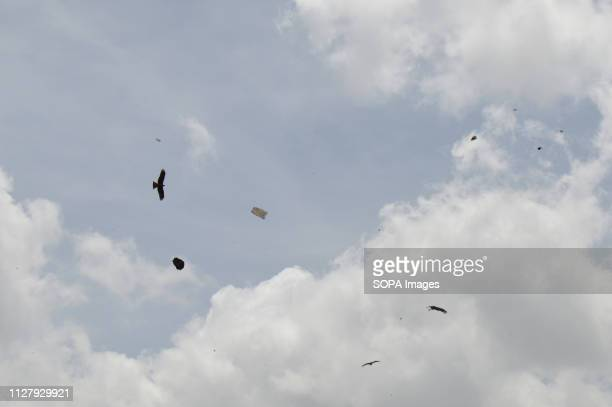 Birds and plastic bags are seen flying in the sky above Dandora Dumpsite Nairobi generates an average of 3000 tons of solid waste every day from...