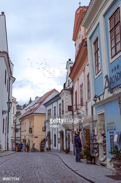 birds and the street at the old town, český krumlov, czech republic - vsojoy stockfoto's en -beelden