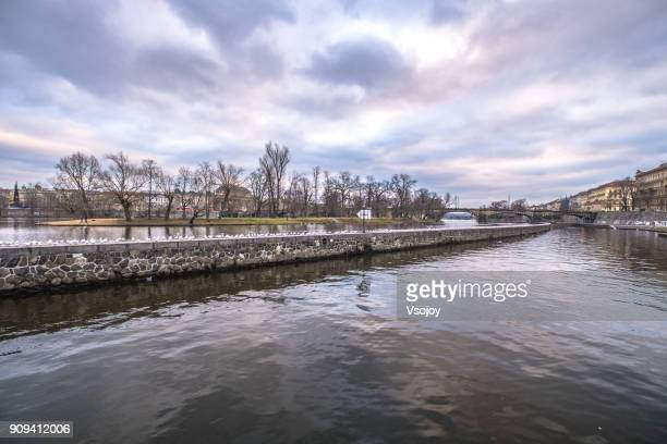 birds at the vltava river, prague, czech republic - vsojoy stock pictures, royalty-free photos & images