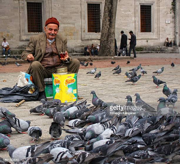 Birds, bird, kuslar, old, man, tea, street, istanbul, turkey, turkish, many, colorful, nature, people, life, cigarette, smile, happy, sadness,...