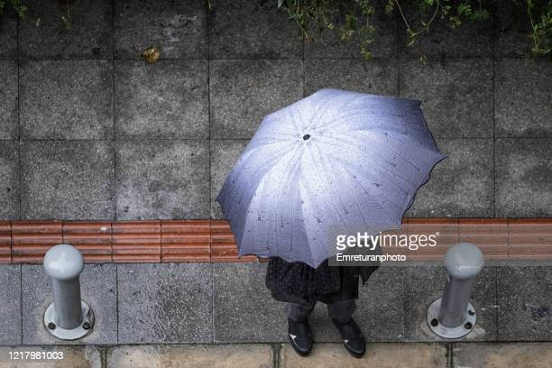 birds eye view of a person with umbrella under rain - emreturanphoto stock pictures, royalty-free photos & images