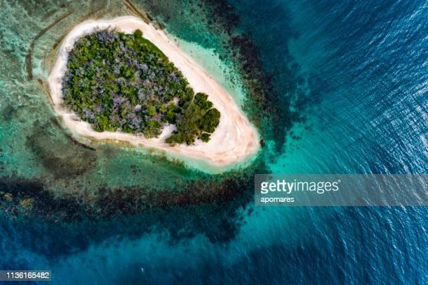 vista de los pájaros de un prístino cayo caribeño tropical solitario con arena blanca de arrecife de coral y cocoteros. - paisajes de bahamas fotografías e imágenes de stock
