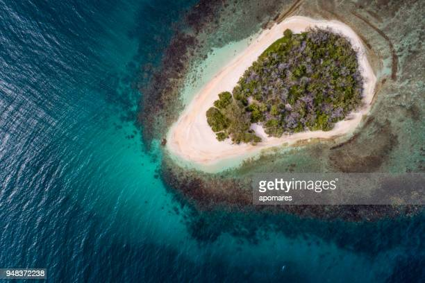 Birds eye view of a pristine lonely tropical Caribbean cay with white sand coral reef and coconut trees.