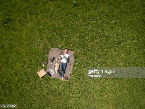 bird's eye view of woman lying on blanket on meadow with dog using tablet - one animal stock pictures, royalty-free photos & images