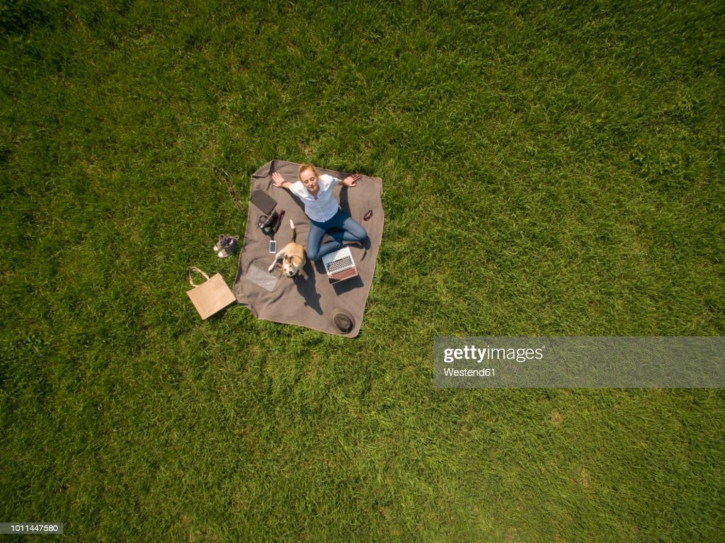 Bird's eye view of woman sitting on blanket on meadow with dog and laptop : Stock Photo
