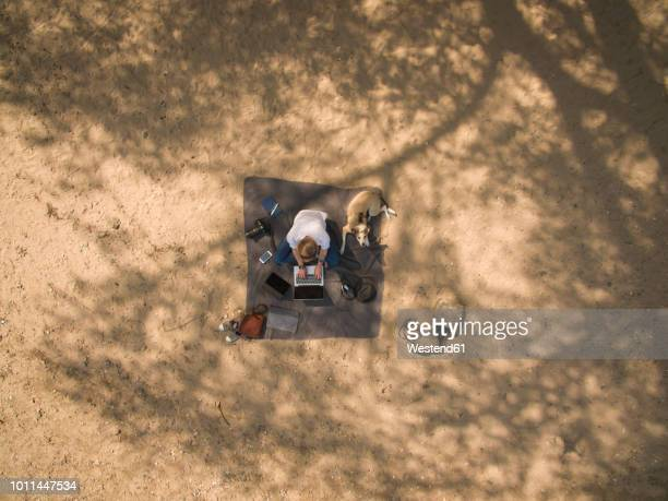 Bird's eye view of woman sitting on blanket with dog using laptop