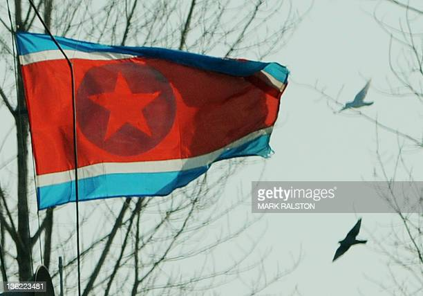 Birds fly as the North Korean flag flutters before sirens were sounded at 11am for the memorial service of the late leader Kim JongIl at the Chinese...