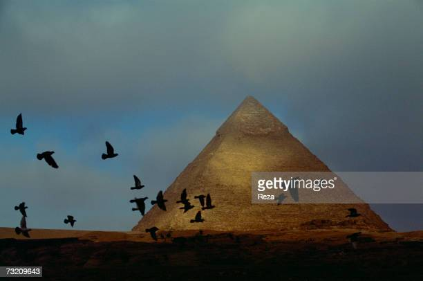 Birds fly away across the horizon in front of the Pyramid of Kephren one of the three pyramids of Giza on March 2001 in western district of the...