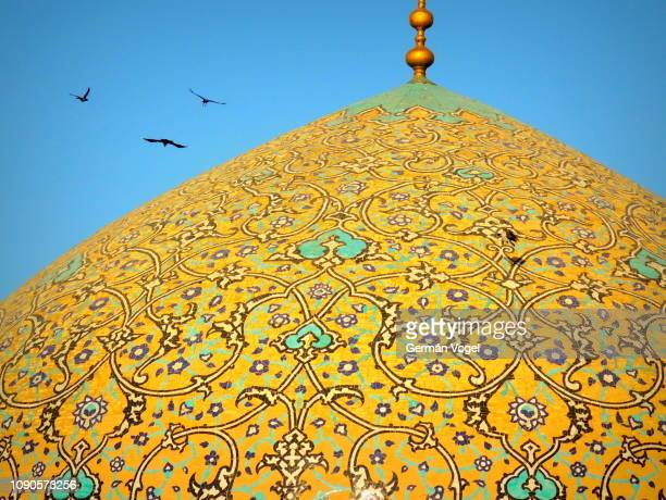 birds fly by famous mosque dome - sheikh lotfollah, isfahan, iran - zoom in stock photos and pictures