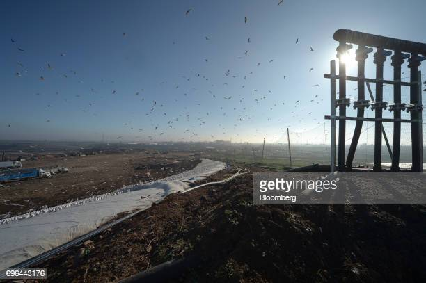 Birds fly near a landfill gas extraction wellhead at the perimeter of an open landfill cell at the Melbourne Regional Landfill site operated by at...