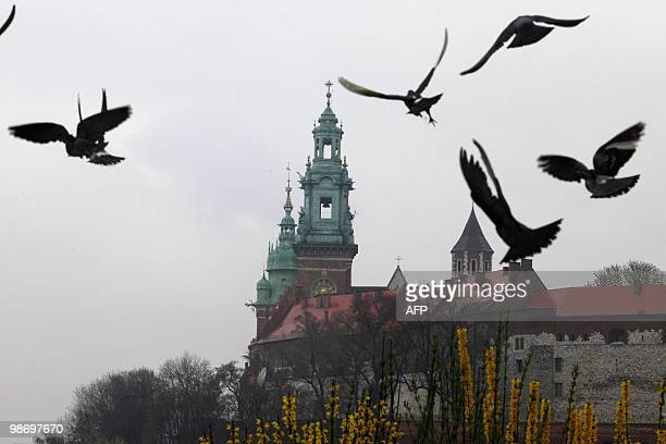 Birds fly outside Wawel castle on April 14, 2010 in the southern Polish city of Krakow, where Polish President Lech Kaczynski and his wife Maria are...
