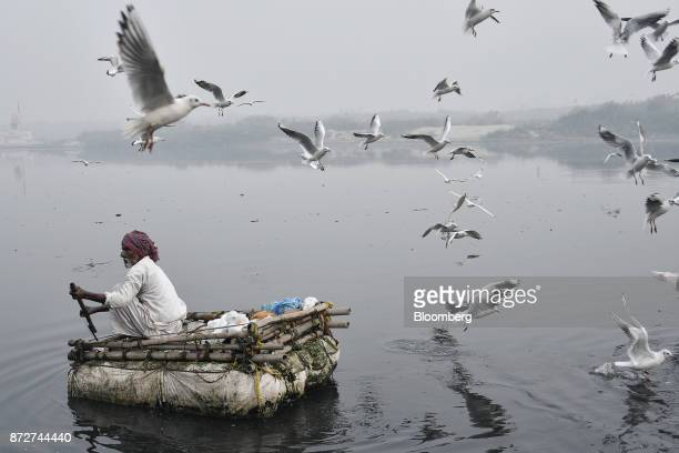 Birds fly over a man sitting on a raft rowing along the Yamuna river shrouded in smog in New Delhi India on Saturday Nov 11 2017 Thick toxic smog...