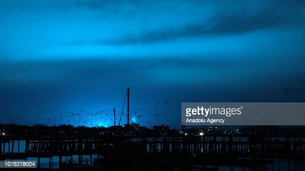 Birds fly over a pier as a blue light illuminates the night sky after a transformer explosion at Queens Borough in New York United States on December...