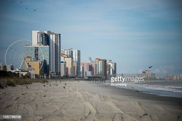 Birds fly over an empty beach in an evacuated zone ahead of Hurricane Florence in Myrtle Beach South Carolina US on Wednesday Sept 12 2018 Hurricane...
