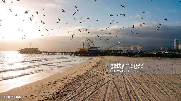 TOPSHOT Birds fly over an empty Santa Monica beach with the Santa Monica Pier in the background as parks and beaches are off limits to help stem the...