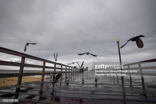 Birds fly over the Seal Beach pier as storm clouds hang overhead in Seal Beach on Tuesday Jan 9 2018