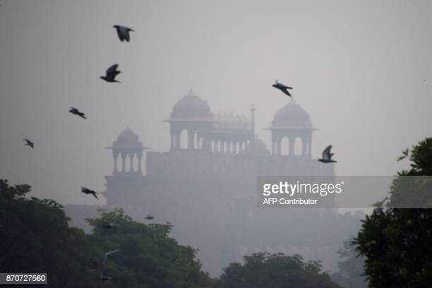 Birds fly past the Red Fort as smog envelop the old quarters of New Delhi on November 6 2017 / AFP PHOTO / DOMINIQUE FAGET