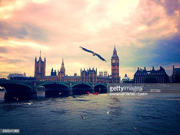 Birds Flying Against Big Ben And The Houses Of Parliament
