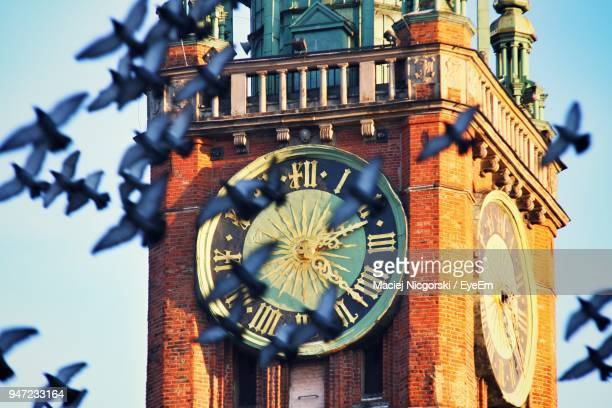 birds flying against big ben - gdansk stock pictures, royalty-free photos & images