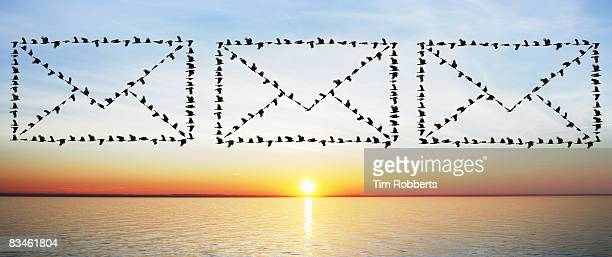 Birds flying in email envelope formations