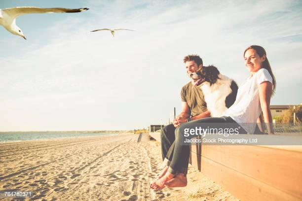 Birds flying near Caucasian couple and dog at beach