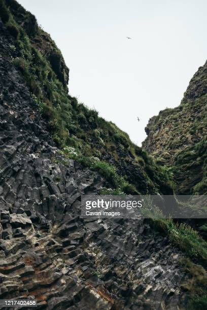 birds flying over basalt rocks at black beach, iceland - bedrock stock pictures, royalty-free photos & images