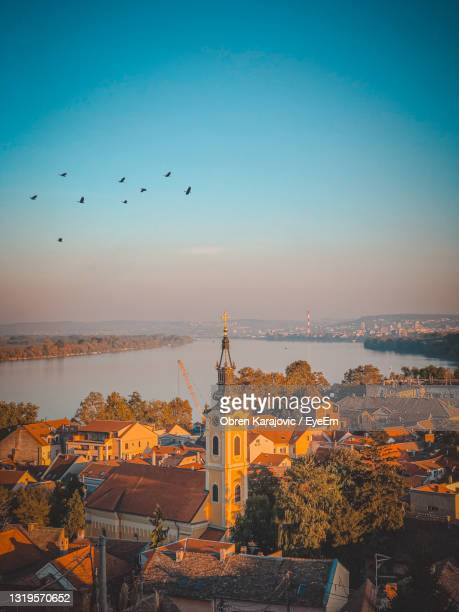 birds flying over buildings in city against sky - belgrade serbia stock pictures, royalty-free photos & images