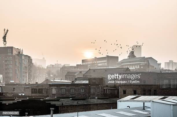 birds flying over buildings in city against sky - sheffield stock pictures, royalty-free photos & images