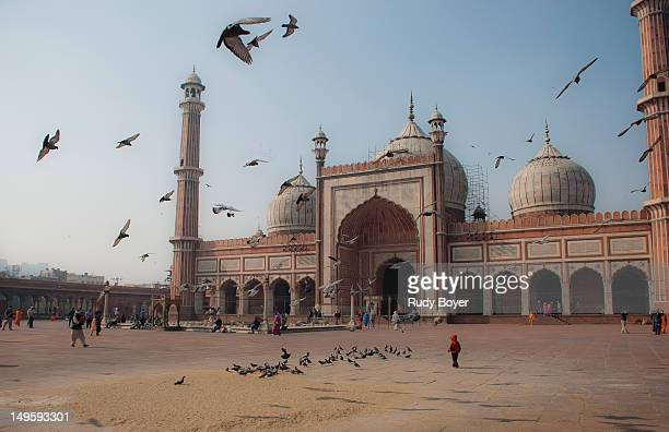 birds flying over jama masjid - jama masjid delhi stock pictures, royalty-free photos & images