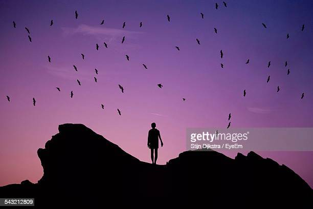 Birds Flying Over Man Walking Amid Rocks