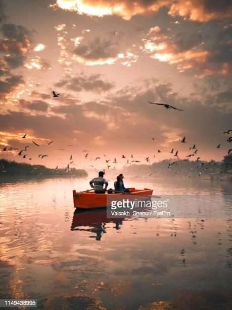 birds flying over people sailing in lake against sky during sunset - delhi stock pictures, royalty-free photos & images