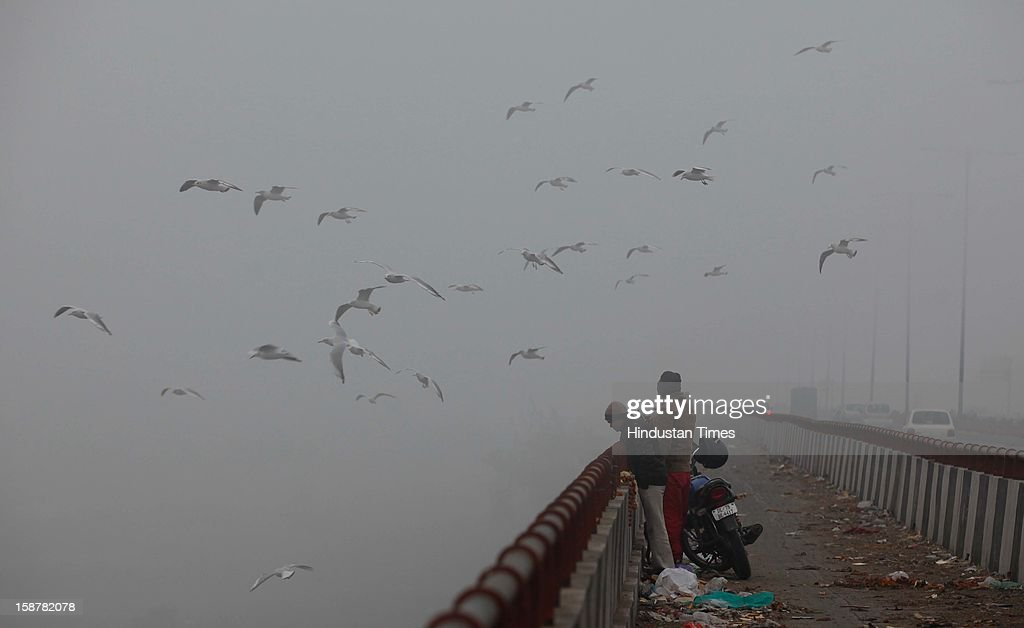Birds flying over the banks of the river Yamuna on a cold and foggy morning on December 28, 2012 in New Delhi, India. While the maximum temperature was recorded at 19 deg C, up from yesterday's temperature by 2.4 degrees, the minimum temperature today dipped to 6.3 deg C, a degree below the normal.