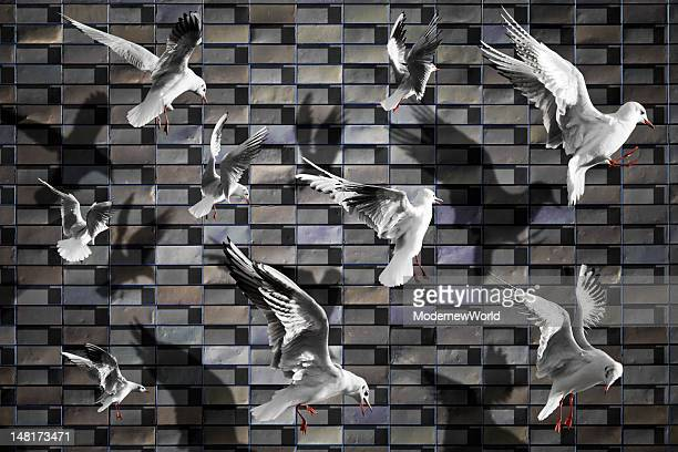 birds flying - evasione dalla realtà foto e immagini stock