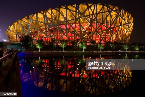 bird's nest at night - stadio olimpico nazionale foto e immagini stock