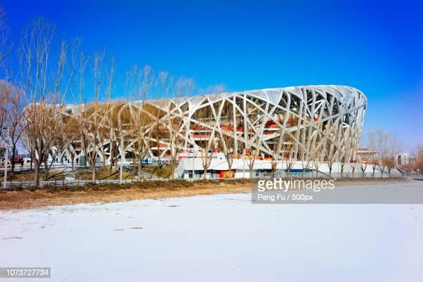 bird's nest in winter - stadio olimpico nazionale foto e immagini stock