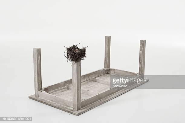 Bird's nest on leg of table set upside down against white background
