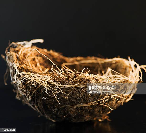 bird's nest - easter basket stock photos and pictures