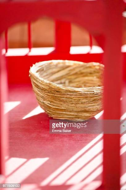 birds nest - emma baker stock pictures, royalty-free photos & images
