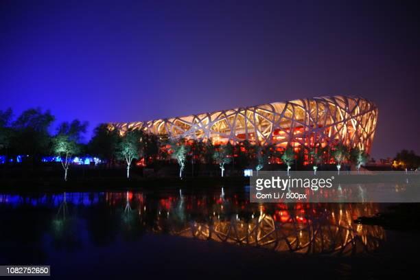 bird's nest/olympic stadium - stadio olimpico nazionale foto e immagini stock