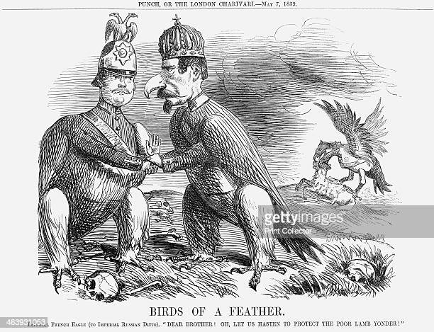 'Birds of a Feather' 1859 In 1859 there was an ongoing struggle between France and Austria over Italian independence as the Italian states tried to...