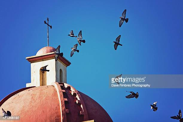birds over mission santa barbara - mission santa barbara stock pictures, royalty-free photos & images