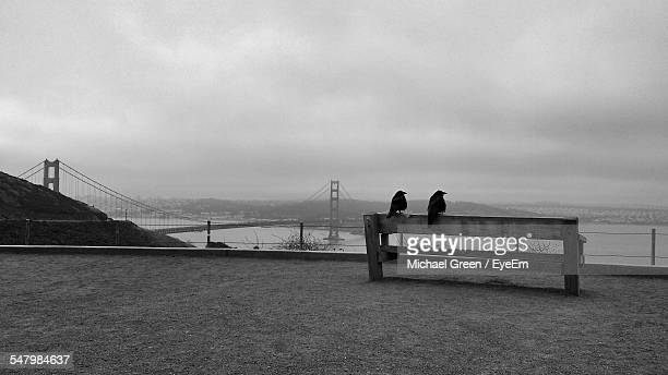 Birds Perching On Bench At Hawk Hill With Golden Gate Bridge In Background Against Sky
