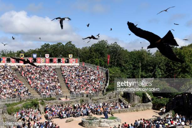 Birds perform during a show at French historical theme park Le Puy du Fou, in Les Epesses, western France on August 14, 2018. - Six crows specially...