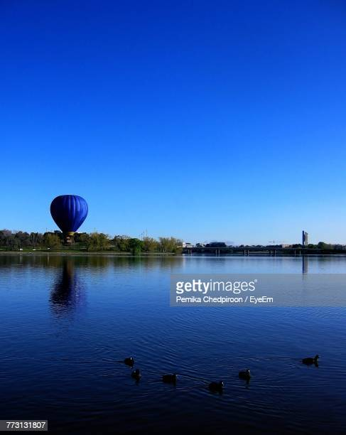 Birds Swimming In Lake Against Clear Blue Sky