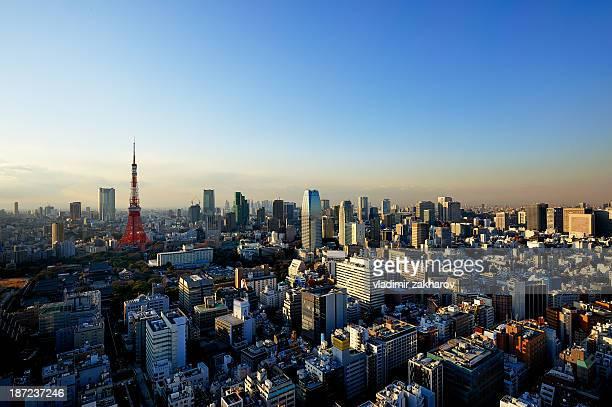 Bird's-eye Tokyo cityscape  at sunset