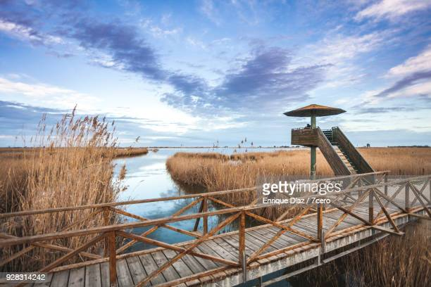 birdwatching tower at the ebro delta - ebro river stock photos and pictures