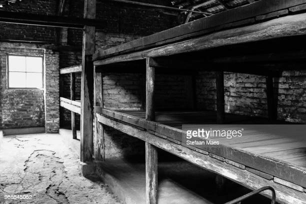birkenau barrack - concentration camp stock photos and pictures