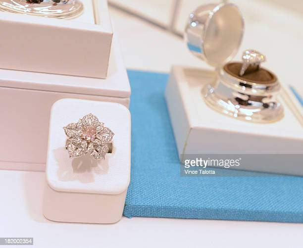 Birks CEO JeanChristophe Bedos who is revamping stores and rebranding the historic Canadian jeweller under the new Maison Birks moniker This is the...