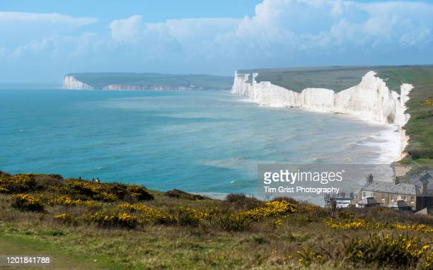 birling gap and the seven sisters cliffs, east sussex, uk - tim grist stock pictures, royalty-free photos & images