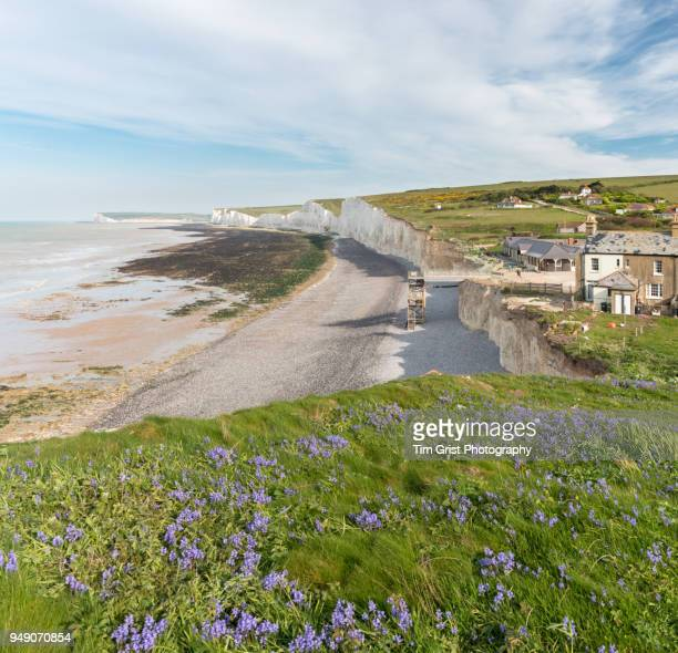 birling gap and the seven sisters cliffs - flowing cape stock pictures, royalty-free photos & images